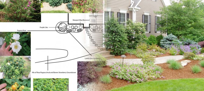 Newtown ct landscape design site analysis land designs for Landscape design career