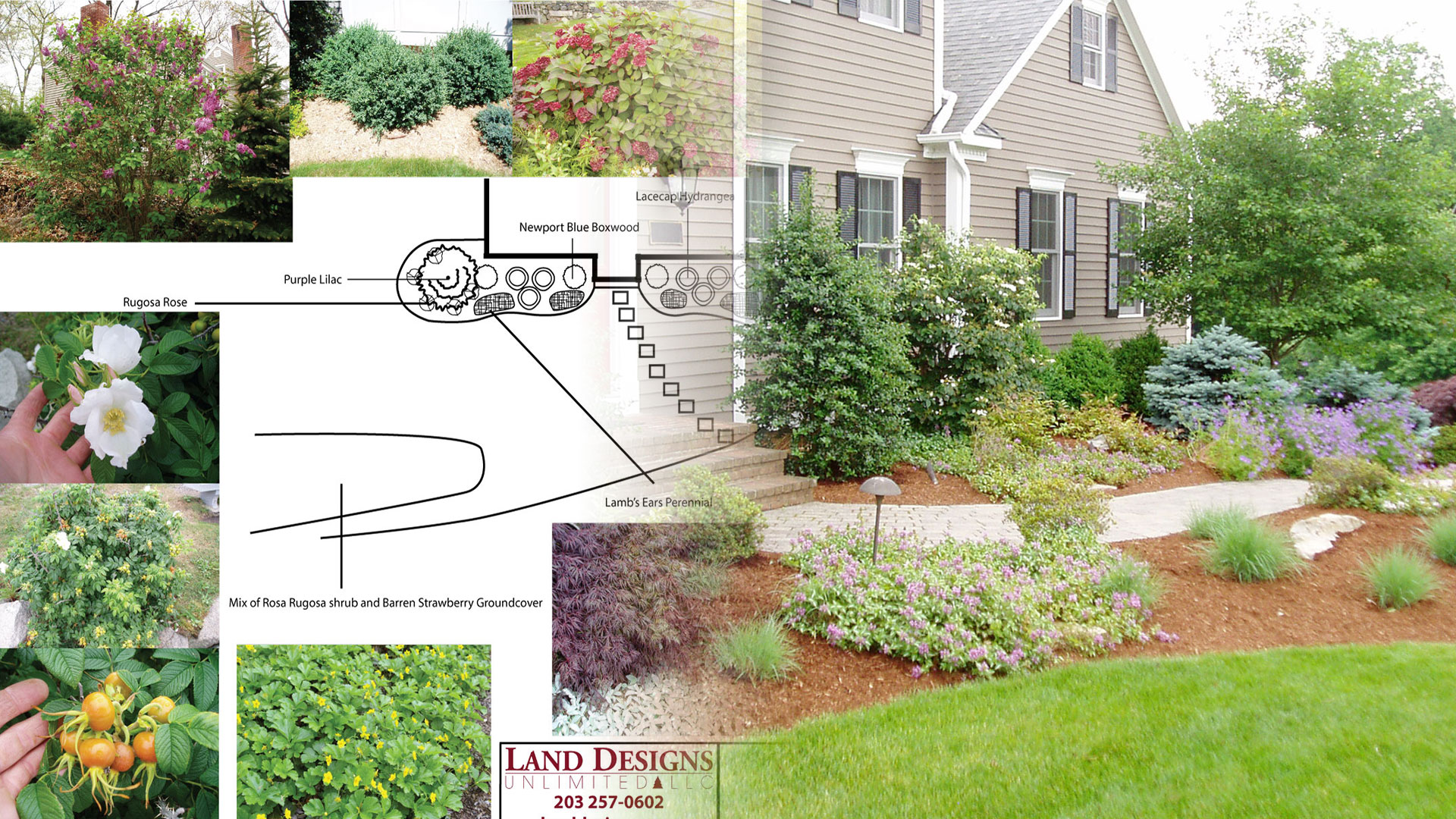 How I Got My Groove The Stages of a Landscape Design