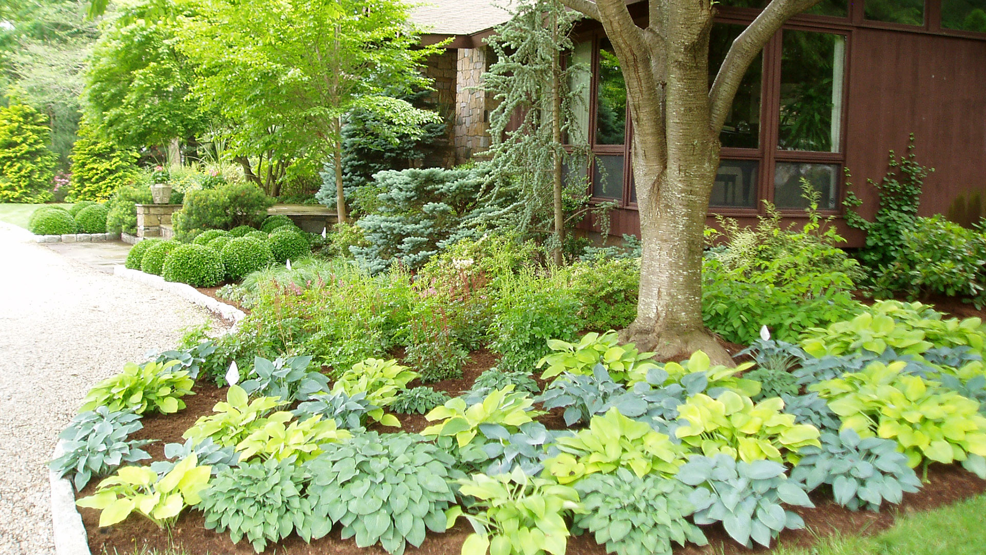 Shaded Landscape Ideas Front Yards